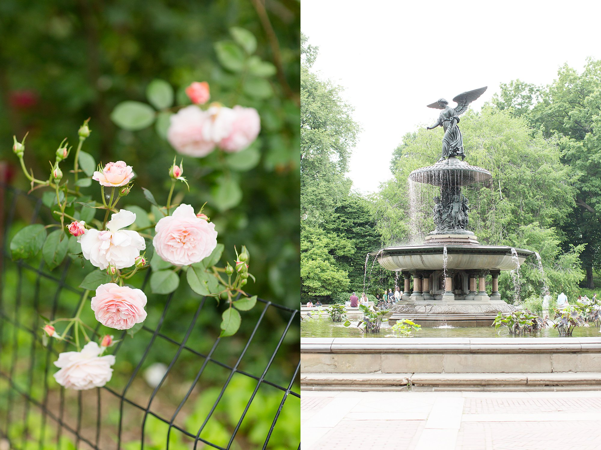 Central Park New York Engagement Session_0001.jpg